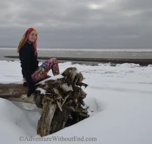 Roo on snowy log