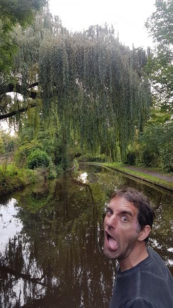 Beautiful scenery and Tony